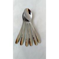 Tea Spoons (6 Pcs)