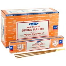 Incense - Nag Champa 15g Divine Karma (Box of 12)